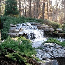 Custom backyard pond and koi pond design gallery in ny nj for Design of maturation pond