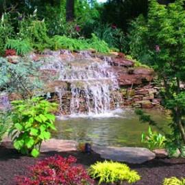 Custom backyard pond and koi pond design gallery in ny nj for Custom koi ponds